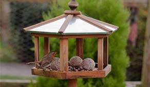 How to make your garden a wildlife haven