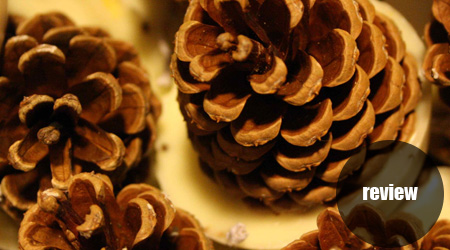 New Arrival: Pine Cone Firelighters!