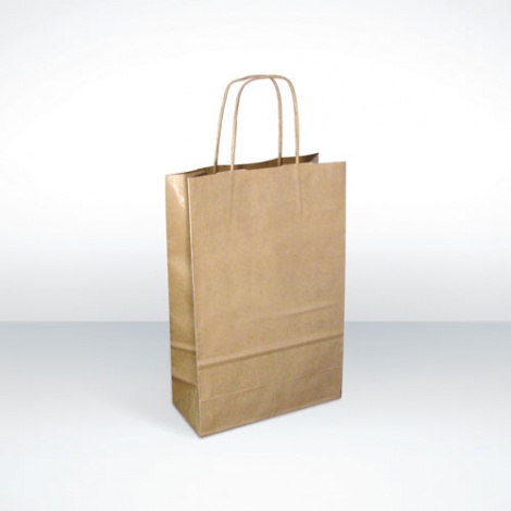Printed Recycled Brown Paper Bag