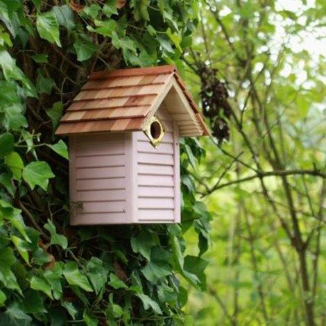 New England Style Wildlife World Bird Box Eco Gifts