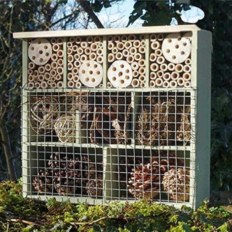 Multi Room Insect House
