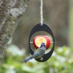 ashortwalk Hanging Bird Feeder