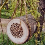 Hanging Bee Log