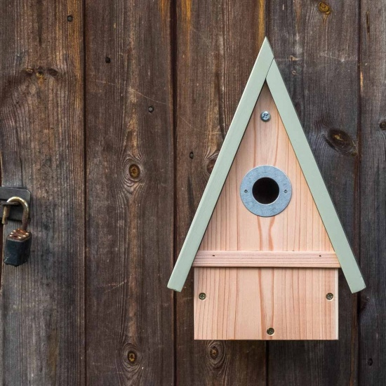 Multi Species Bird Box