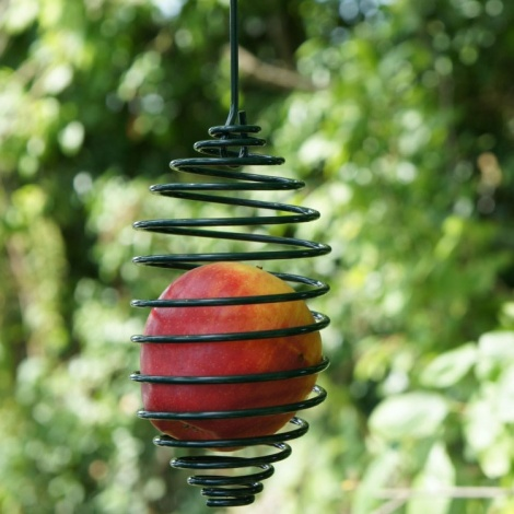 Spiral Apple Bird Feeder