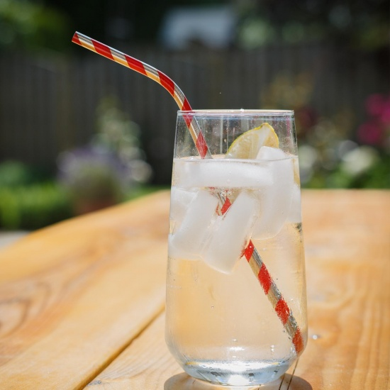 Red Striped Metal Straws