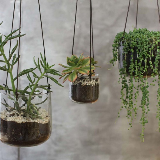 Viri Hanging Planter