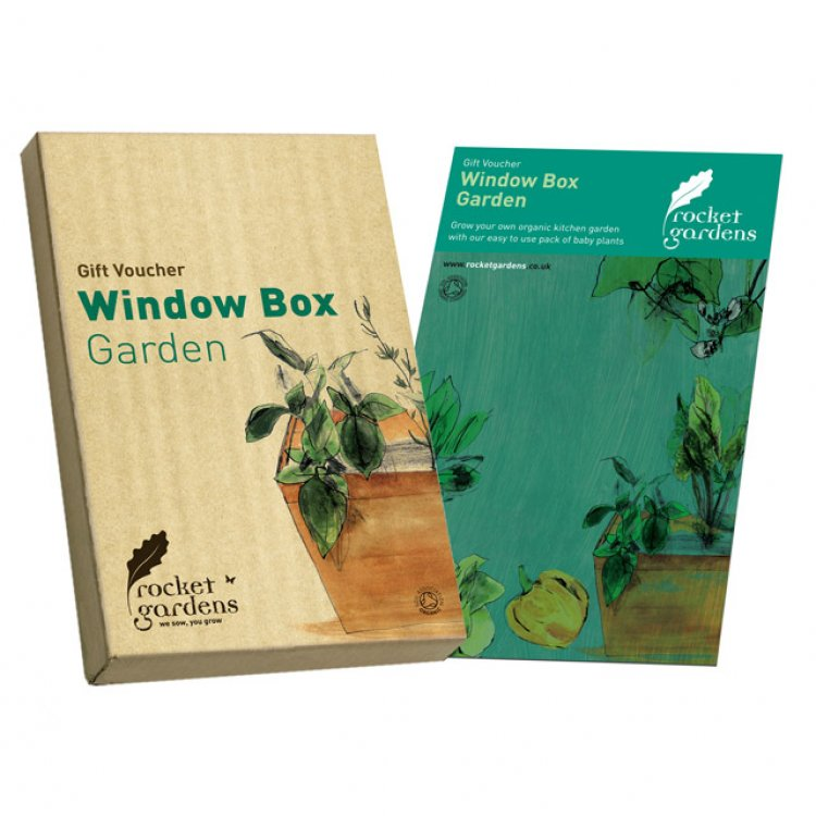 Window Box Rocket Garden